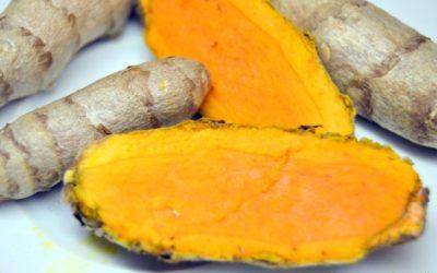 Le CURCUMA : sa culture, sa cuisine et les secrets ayurvédiques du curry