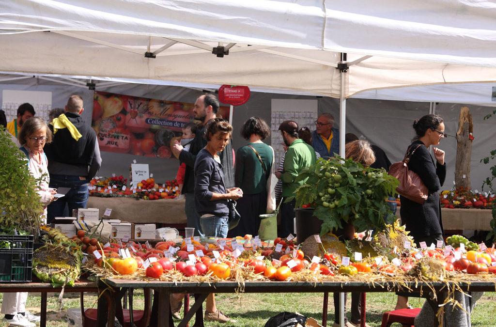 La 6ème édition du Brussels Tomato Festival