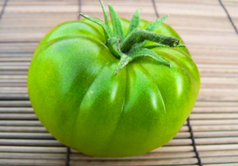 Toxiques, les tomates vertes ?